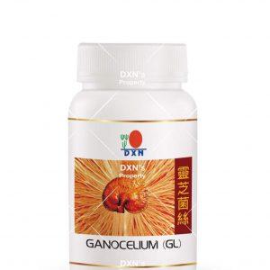 DXN GL ganoderma kapszula
